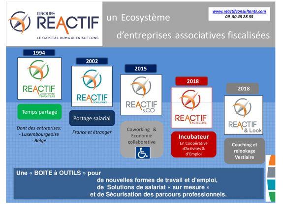 Schéma bilan 2018 du groupe REACTIF - RHinfoGE