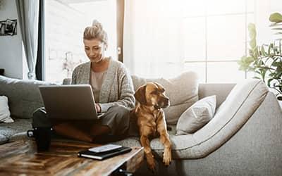 Télétravail & box Internet : quelques conseils pour rassurer son employeur