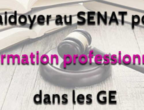 Plaidoyer au SENAT pour la formation professionnelle dans les Groupements d'Employeurs