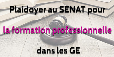 Playdoyer au Senat formation professionnelle GE